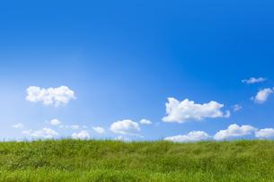 緑の草原と青空に雲の写真素材 [FYI04843165]