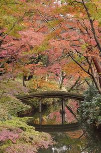 六義園 秋の山陰橋の写真素材 [FYI04843168]