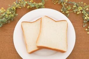 お皿に乗った食パンの写真素材 [FYI04843253]