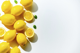 Lemons on white background. Flesh lemons on white text space.の写真素材 [FYI04843276]
