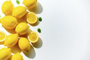 Lemons on white background. Flesh lemons on white text space.の写真素材 [FYI04843276]