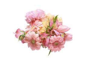 様々な花のブーケの写真素材 [FYI04843301]