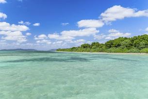 竹富島の海の写真素材 [FYI04843320]