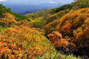 御嶽山の紅葉の写真素材 [FYI04843768]