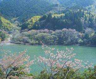熊本県 風景 市房ダムの写真素材 [FYI04843869]