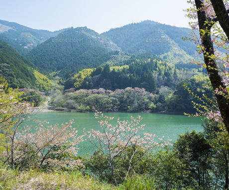 熊本県 風景 市房ダムの写真素材 [FYI04843871]