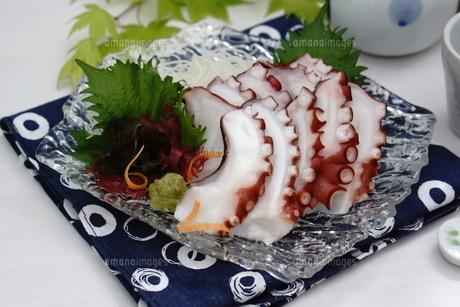 夏至 タコの刺身の写真素材 [FYI04843971]