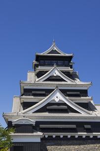 熊本城の大天守 熊本県の写真素材 [FYI04844251]