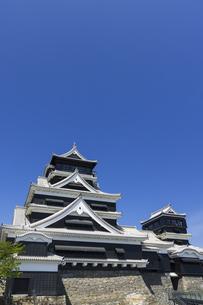熊本城 熊本県の写真素材 [FYI04844254]
