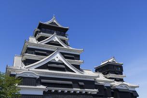 熊本城 熊本県の写真素材 [FYI04844255]