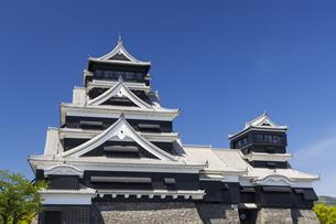 熊本城 熊本県の写真素材 [FYI04844256]