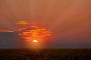 草原と朝日の写真素材 [FYI04844508]