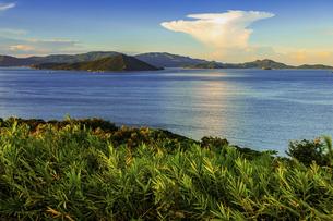 【夏】入道雲が浮かんでいる海の自然風景の写真素材 [FYI04844511]