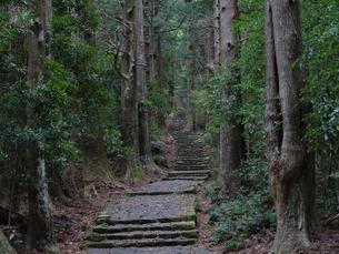 熊野古道の写真素材 [FYI04844606]