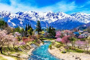 春の白馬岳の写真素材 [FYI04844620]