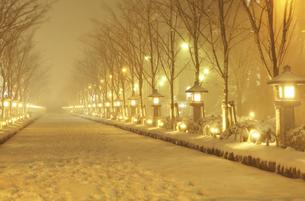 鎌倉の雪の若宮大路の灯篭の写真素材 [FYI04844657]