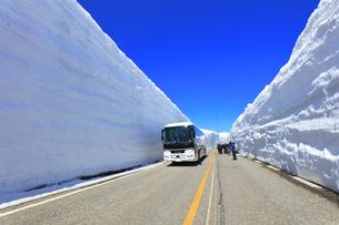 春の立山 雪の大谷と高原バスに快晴の空の写真素材 [FYI04844754]
