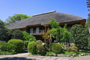 茅葺屋根の伝統建築(世田谷代官屋敷)の写真素材 [FYI04845057]