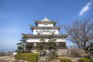 丸亀城(天守閣)の写真素材 [FYI04845103]