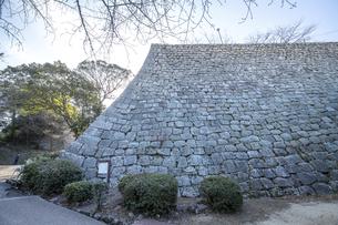 丸亀城の石垣(扇の勾配)の写真素材 [FYI04845112]