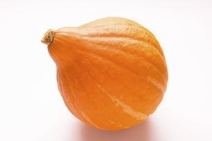 かぼちゃ 品種はコリンキーの写真素材 [FYI04845386]