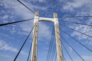 青空を背景にした木場公園大橋の写真素材 [FYI04845602]