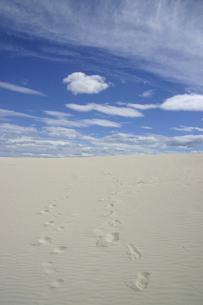 白い砂浜に付いた2人の足跡と青空の写真素材 [FYI04845607]