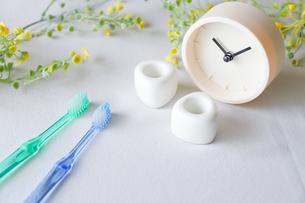 歯ブラシ 歯磨きイメージの写真素材 [FYI04845716]