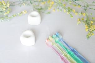 歯ブラシ 歯磨きイメージの写真素材 [FYI04845718]