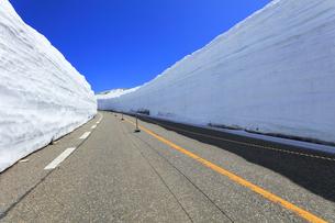 春の立山 雪の大谷と快晴の空の写真素材 [FYI04845910]