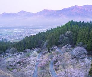 熊本県 高森町 自然 風景 高森峠の写真素材 [FYI04845979]