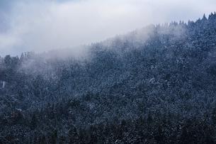 冬の余呉湖の写真素材 [FYI04846110]