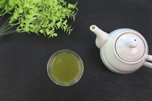 緑茶の写真素材 [FYI04846205]