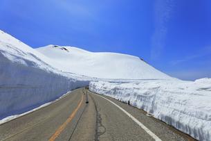 春の立山 雪の大谷の写真素材 [FYI04846618]