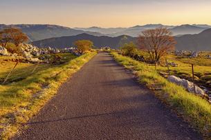 【自然風景】夜明けの朝の四国カルスト 道の写真素材 [FYI04846671]
