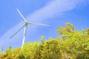 【電気】森林の中の風力発電 再生可能エネルギーの写真素材 [FYI04846678]