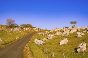 【自然風景】青空の下の四国カルストの写真素材 [FYI04846680]