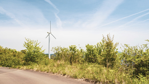 【電気】森林の中の風力発電 再生可能エネルギーの写真素材 [FYI04846701]