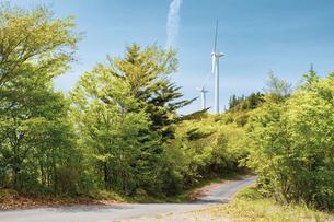 【電気】森林の中の風力発電 再生可能エネルギーの写真素材 [FYI04846703]