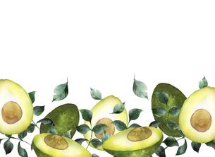 水彩のアボカドと葉っぱのフレームのイラスト素材 [FYI04846747]
