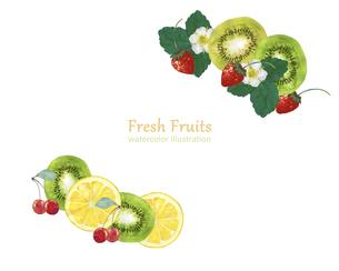 水彩の果物のデコレーションのイラスト素材 [FYI04846754]