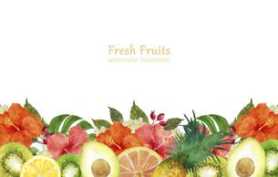 果物とハイビスカスの花のフレームのイラスト素材 [FYI04846757]