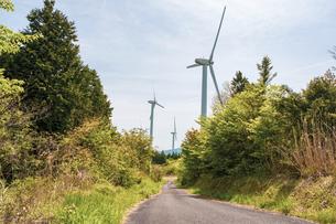 【電気】森林の中の風力発電 再生可能エネルギーの写真素材 [FYI04846792]