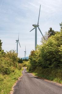 【電気】森林の中の風力発電のタービン 再生可能エネルギーの写真素材 [FYI04846793]