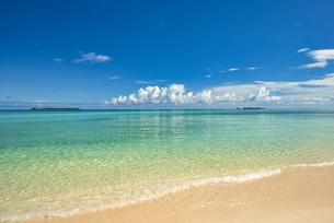 パラオの美しいサンゴ礁の海の写真素材 [FYI04846897]