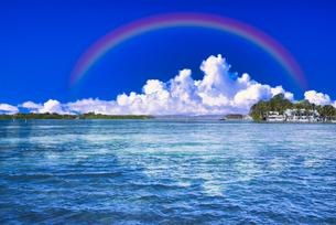 パラオの美しいサンゴ礁の海の写真素材 [FYI04846903]
