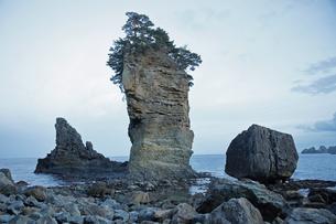 2月 【地学教材】陸中海岸の三王岩の写真素材 [FYI04847068]