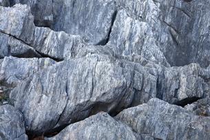 【地学教材】2月  三陸海岸の大理石海岸 -古生代大理石の石切り場-の写真素材 [FYI04847076]