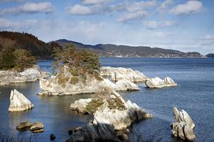 【地学教材】2月  三陸海岸の大理石海岸の写真素材 [FYI04847077]