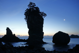 2月 【地学教材】陸中海岸の三王岩の写真素材 [FYI04847084]